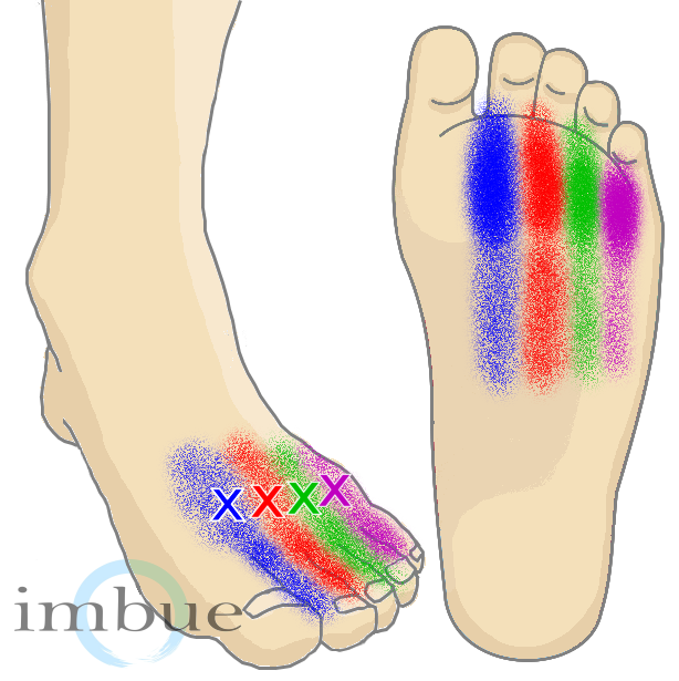 Foot muscle pain relief, warts on feet hurt, warts ...
