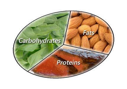 Carbs Fat Protein 76